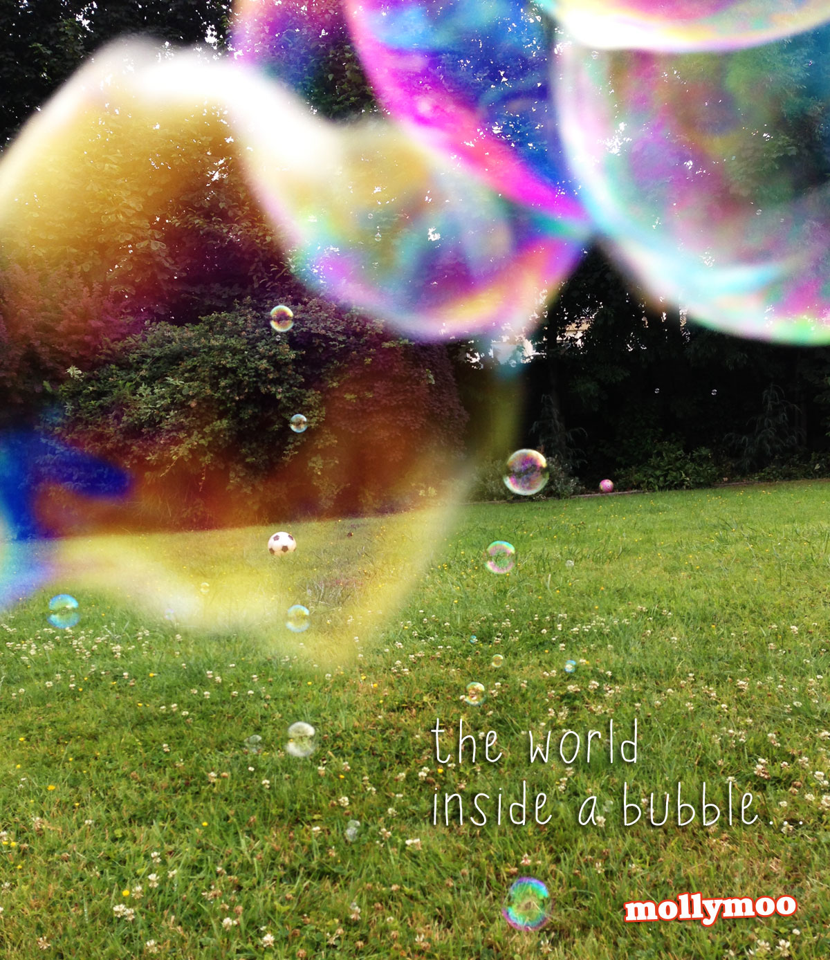 bubble-colour
