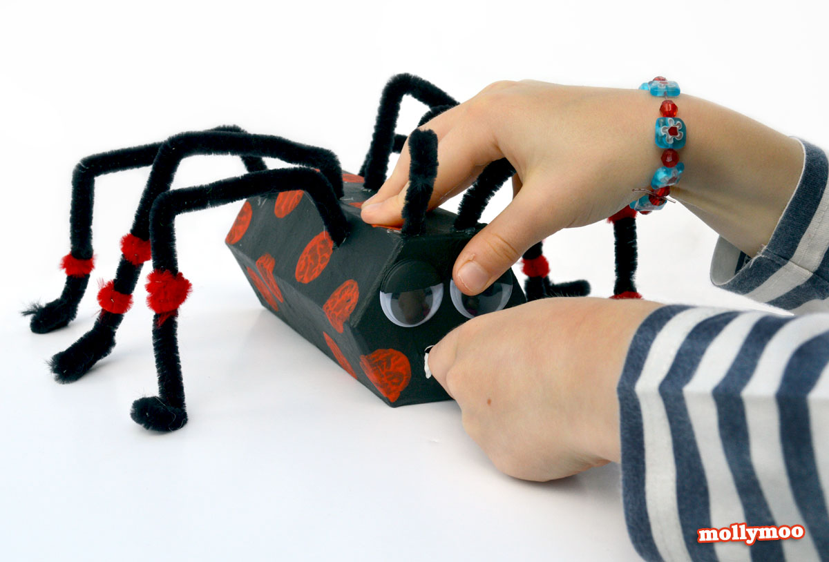 cardboard tube spiders
