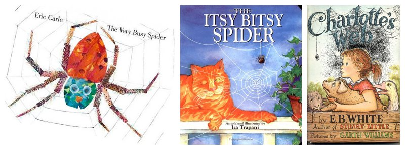 my favourite spider story books for children
